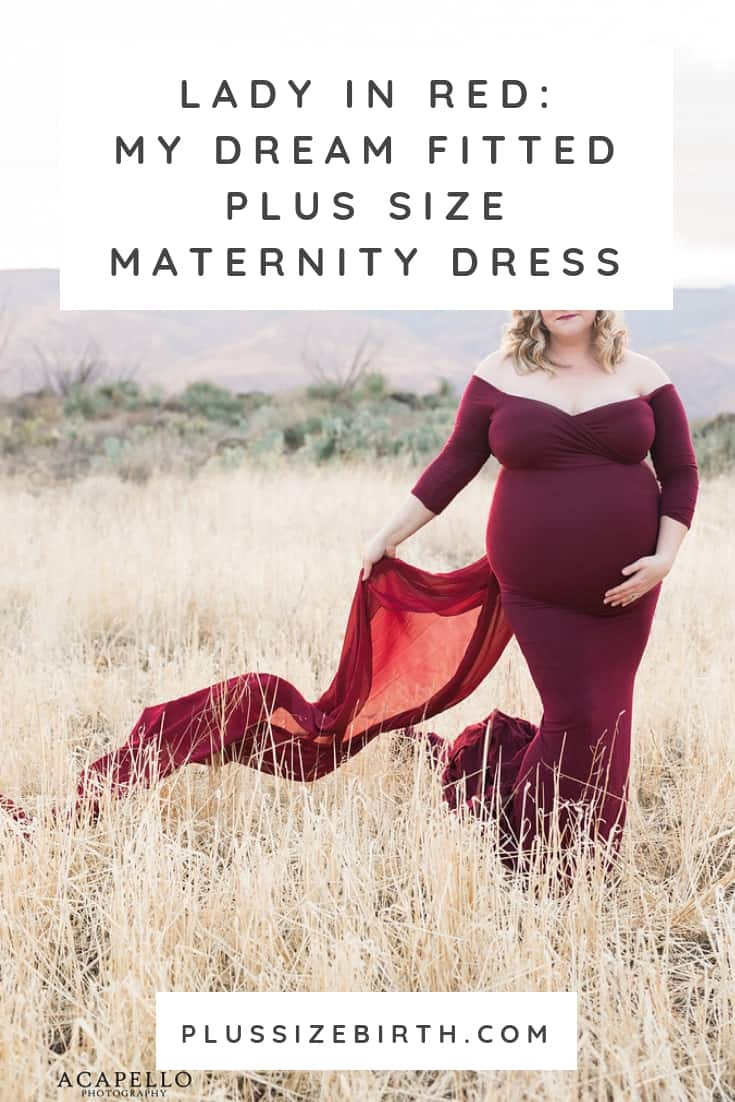 Fitted Plus Size Maternity Dress