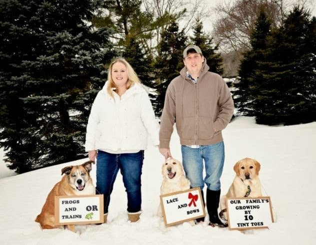 plus size couple with dogs announcing their pregnancy