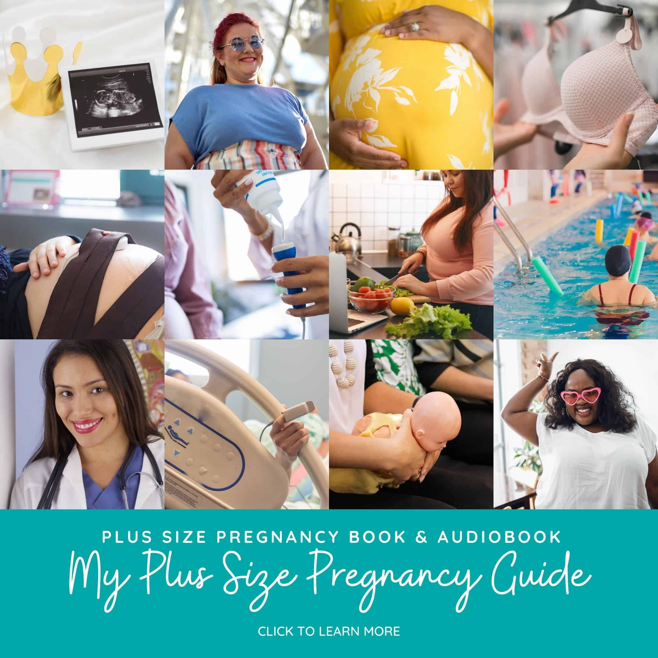 plus size pregnancy book